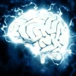Нищо не развива мозъка така както четенето